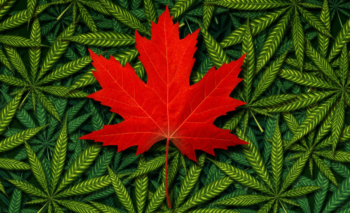 Health Canada Proposed Cannabis Packaging & Labelling Rules