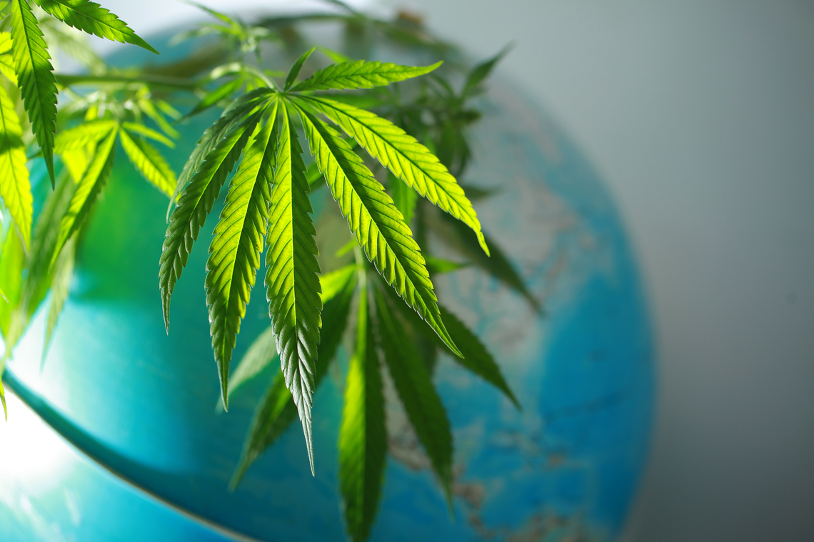 The Regulatory Framework of CBD: Confusing the Public on Both Sides of the Border